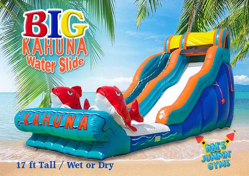 Big Kahuna Water Slide with big fish on the front.