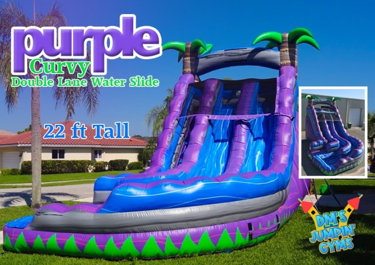 Purple & Blue Dual Lane Water Slide with Curve