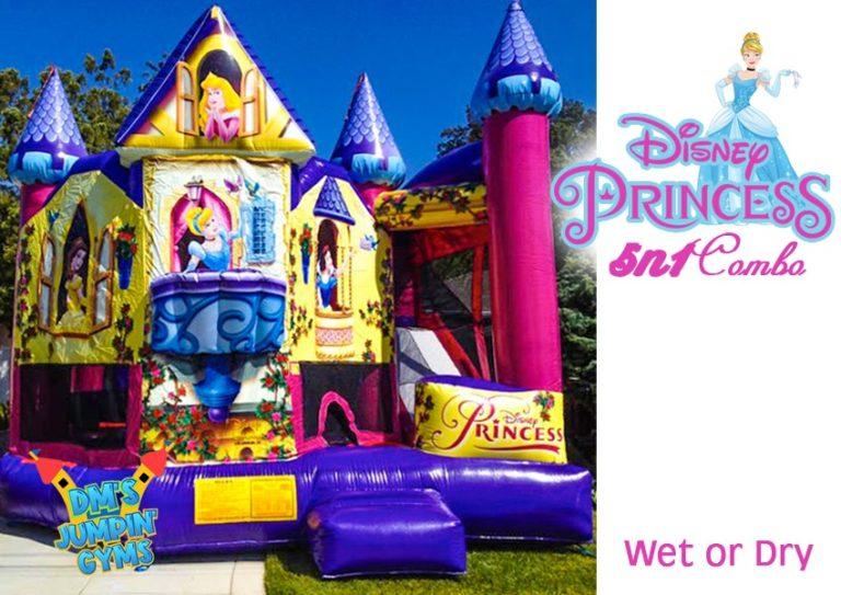 Pink & Purple Princess Themed Bounce House